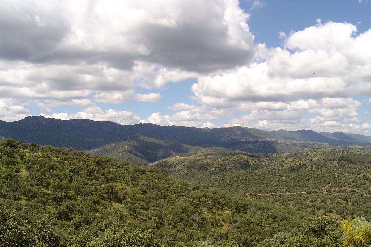 Panorámica del Valle de Alcudia