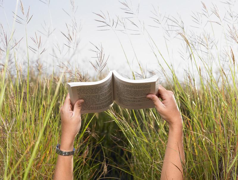 Man Reading Book in Meadow --- Image by © Morgan David de Lossy/Corbis