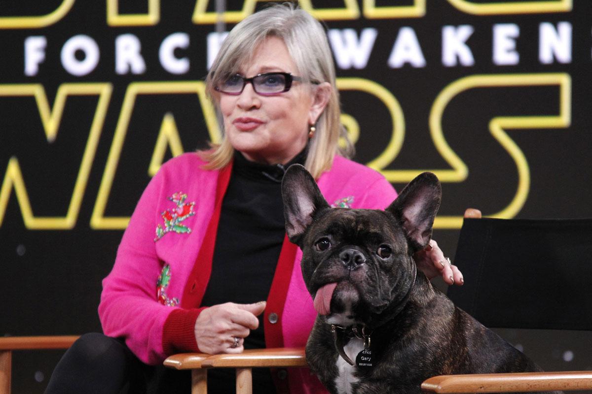 Con su perro, Gary Fisher, un bulldog que la acompañaba a todas partes.