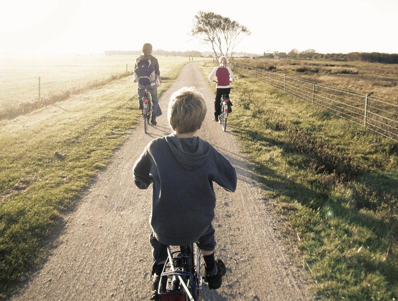 Por qué deberías hacer más actividades con tus hijos al aire libre