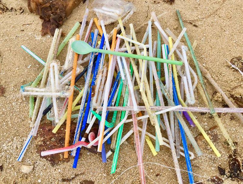 Comienza la guerra contra las pajitas de plástico