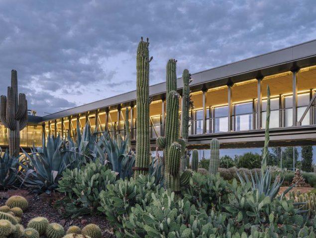 'Desert City', el jardín de cactus más grande de Europa llega a Madrid