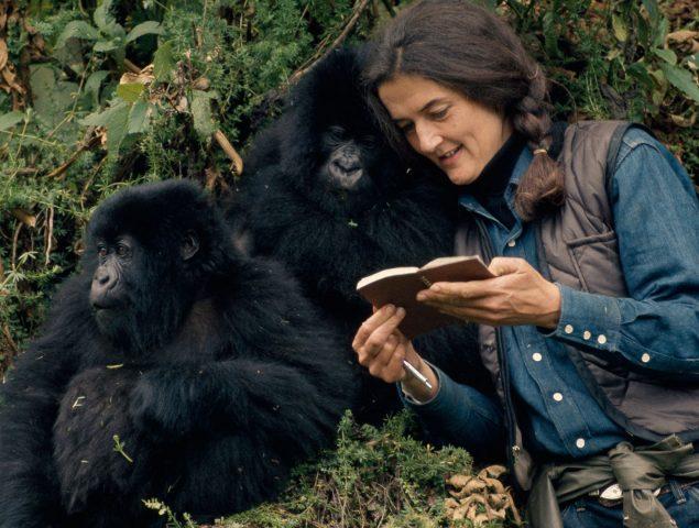 El extraño asesinato sin resolver de Dian Fossey, 'la señora de los gorilas'