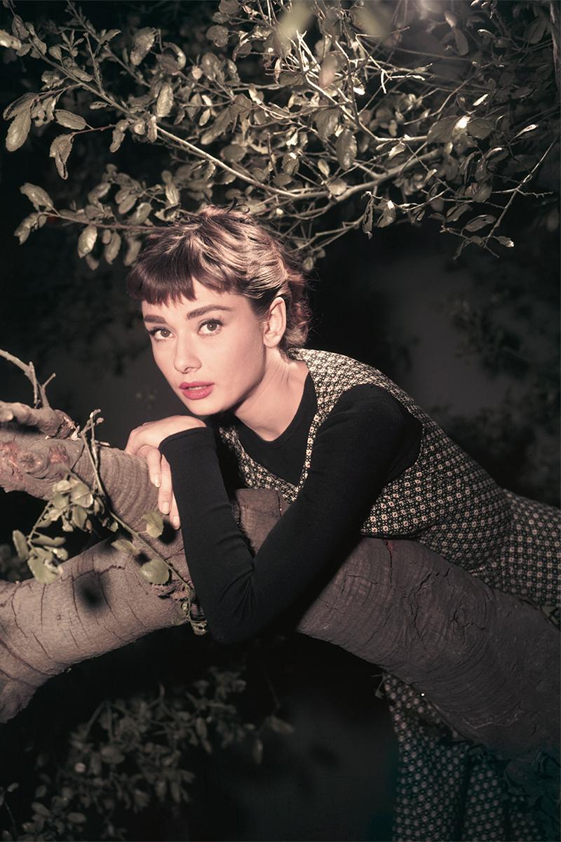 Audrey Moda Mundo Hepburn La Celebrities Al De Marcó Veces Que 25 YUEzOE