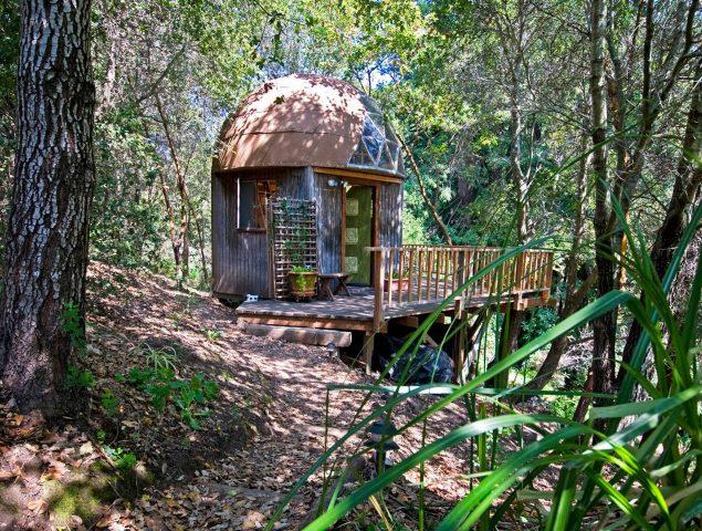 El airbnb más visitado del mundo es una seta 'psicodélica' perdida en un bosque