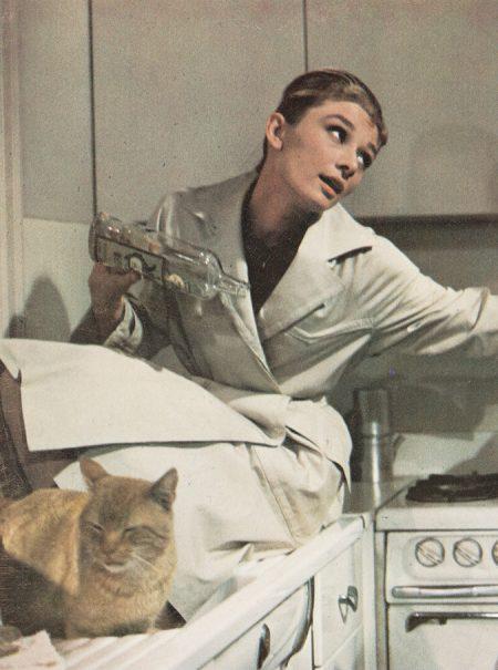 Por qué quieres tanto a tu gato o cómo las mascotas suplen nuestras carencias emocionales