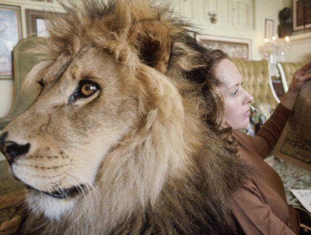 La 'madre de tigres' Tippi Hedren y otros famosos que presumieron de mascotas exóticas