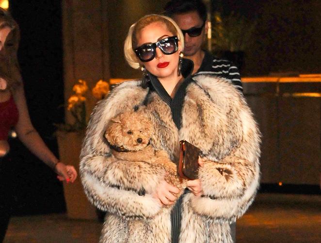 Lady Gaga pieles