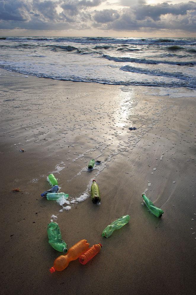 Botellas en la playa