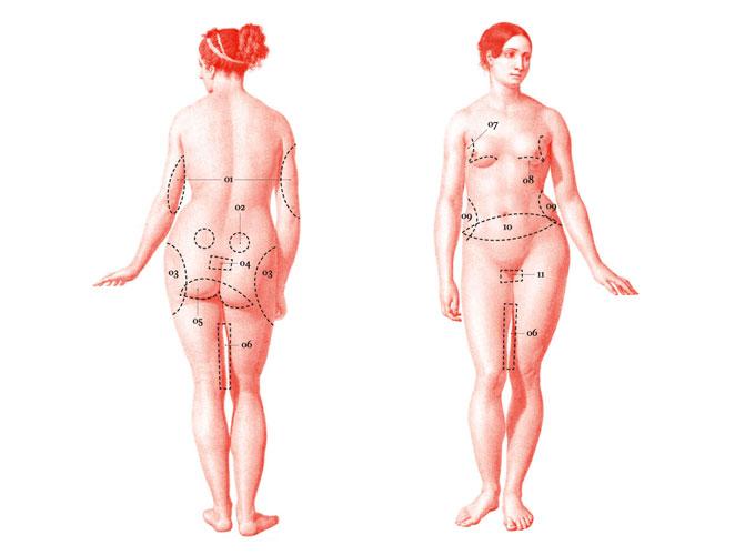 Sala de despiece: curso de anatomía misógina | Actualidad, Moda | S ...