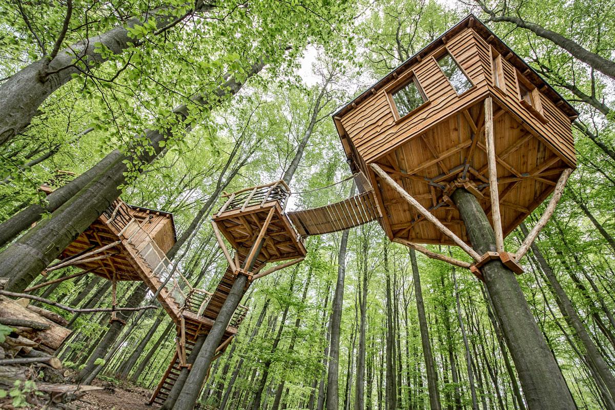 las casitas del arbol mas espectaculares del mundo