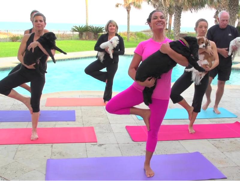 doga yoga con perros