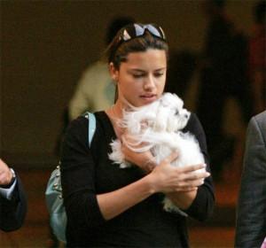 Se busca: perrita de Adriana Lima perdida en Los Ángeles