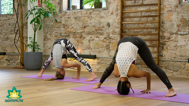 Xuan-lan +Verónica Blume: Posturas de yoga invertidas